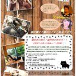全国初!猫好きの為の、猫好きが出会う♡出逢いの猫庭inてしま旅館開催決定!!